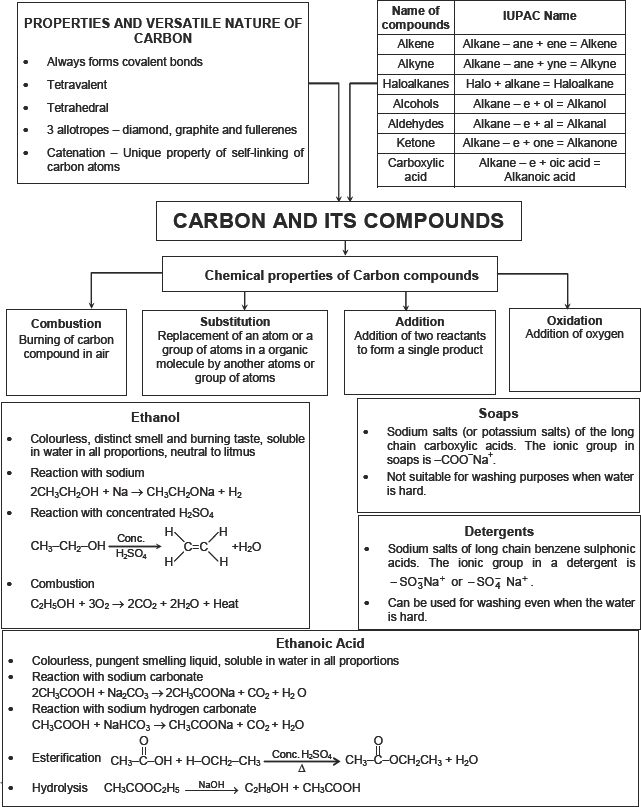 CBSE HOTS Questions for CBSE Carbon and its Compounds Class X – Carbon Compounds Worksheet