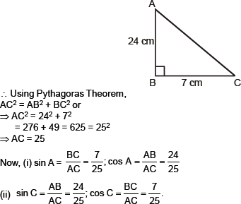 CBSE 10, Math, CBSE- Introduction to Trigonometry, NCERT