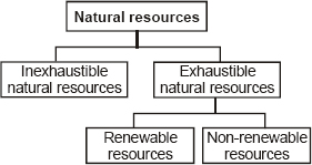 CBSE 8, Science, CBSE- Coal and Petroleum, Notes